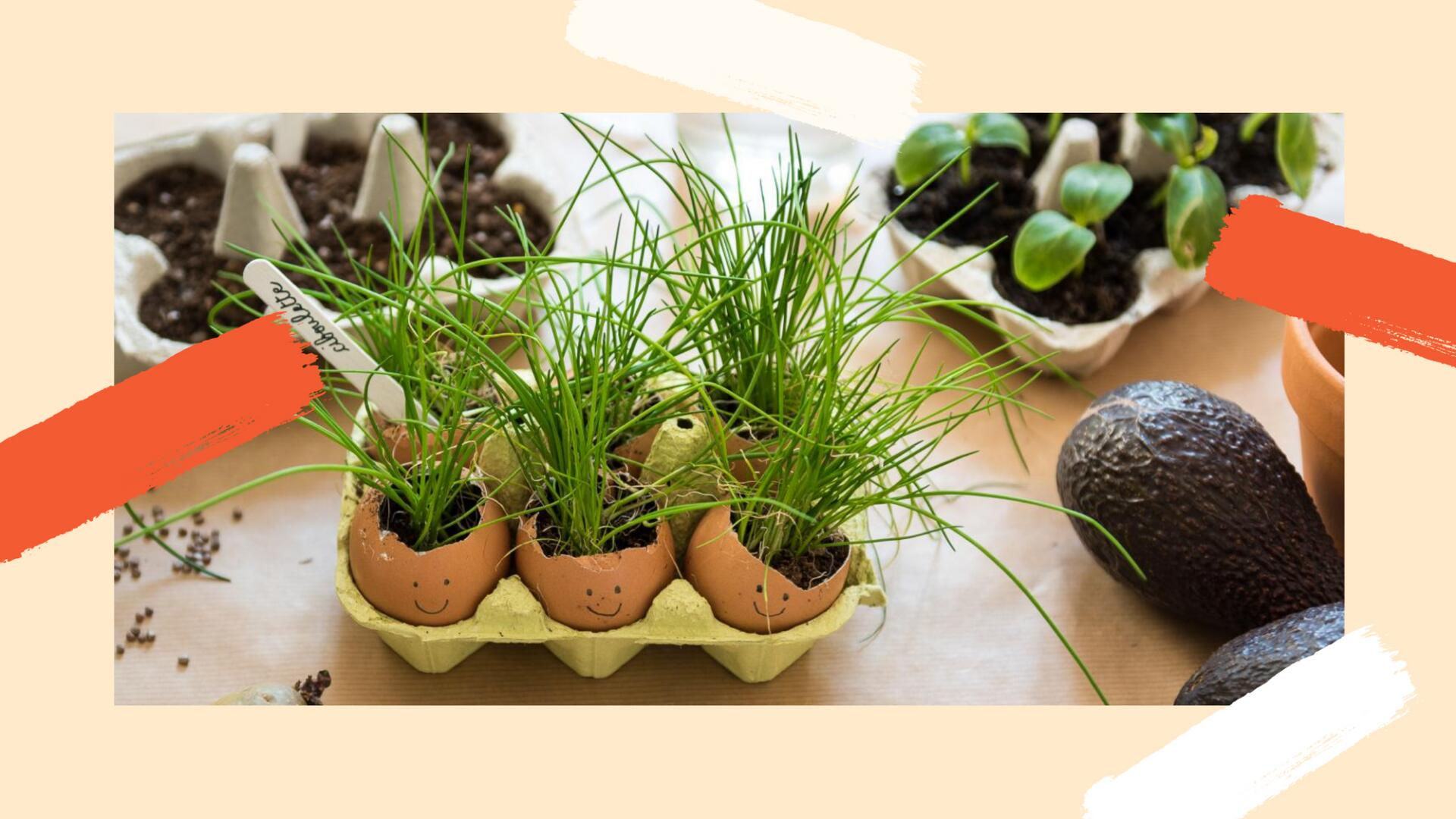 kl_mag_change_lets-do-it_gardening-at-home-with-kids_image-at-bottom