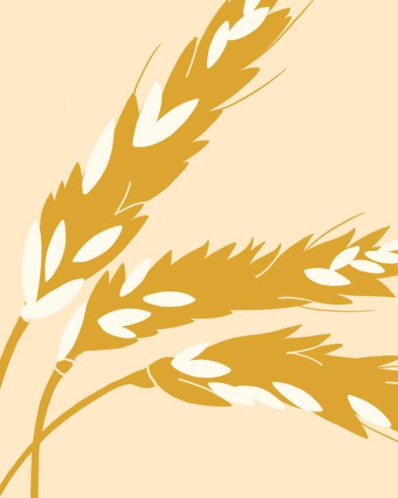 kl_mag_change_my-herbarium_hyaluronic-acid-wheat_push