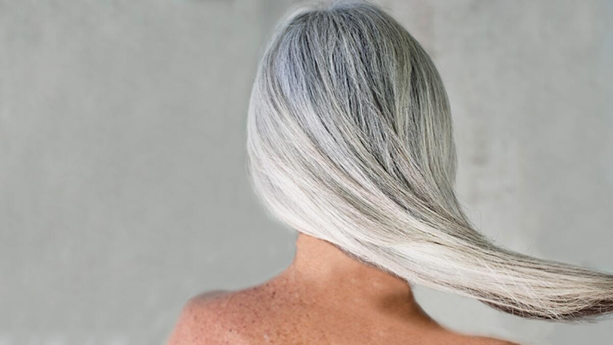 RF_website_expert-dossier-gray-hair_header_hairstylist-tips_804x446