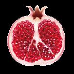 kl_pomegranate_active-ingredient_semantic-cocoon_expandable-fragment_200x200px