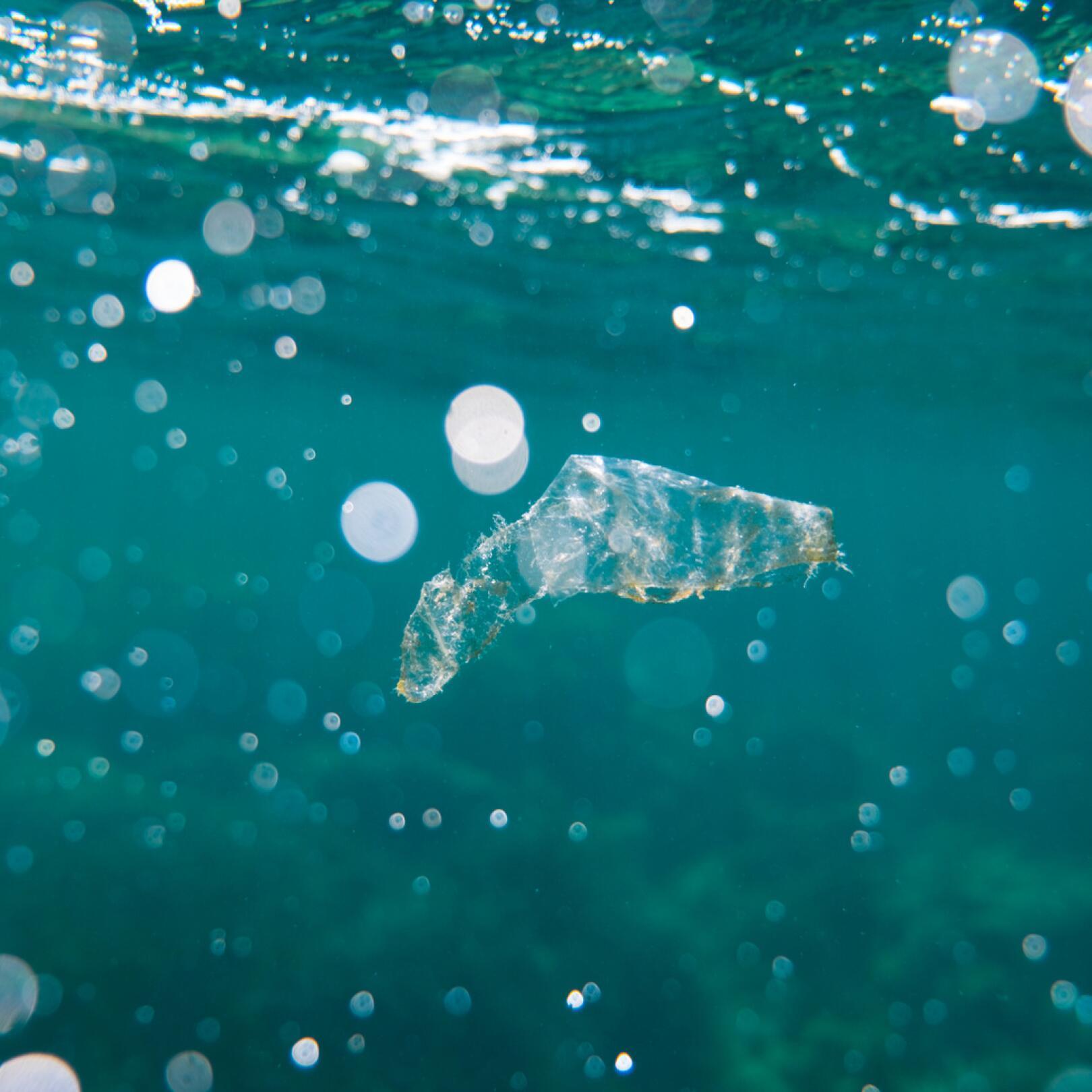 av_solaires_ingredients-toxiques_plastique_ocean_1x1