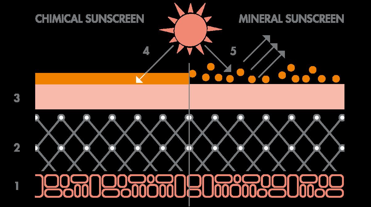 av_solaires_shema_protection_uva_uvb_filtres-chimique-mineral_16x9