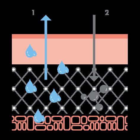 av_peaux-sensibles_schema_eczema-atopique_1x1_v2