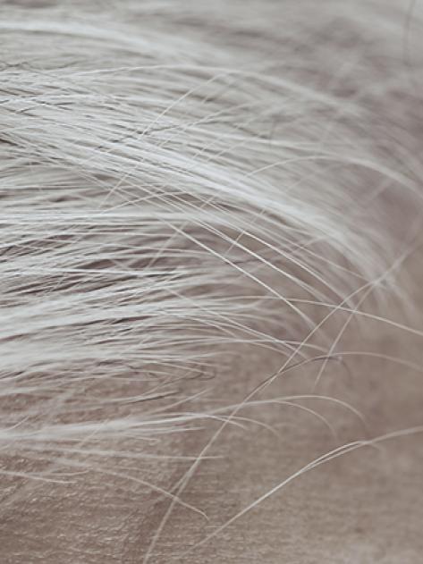 RF_website_expert-dossier-gray-hair_why-gray-hair_what-is-a-gray-hair_804x446